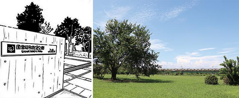凪とゴンの節約バーベキューのシーン。ドラマでは多摩川緑地野球場近くの一本木が使われました。(原作の舞台は国営昭和記念公園)