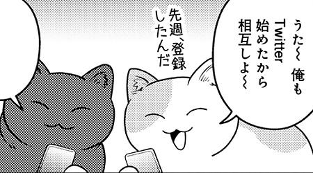 #23 SNSにおける猫