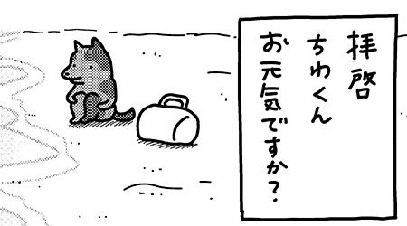 #21 こいぬと海
